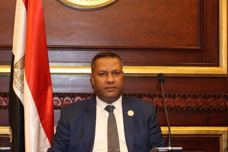 النائب محمد حمزة  يشيد بجهود القوات المسلحة فى القضاء على البؤر الإرهابية